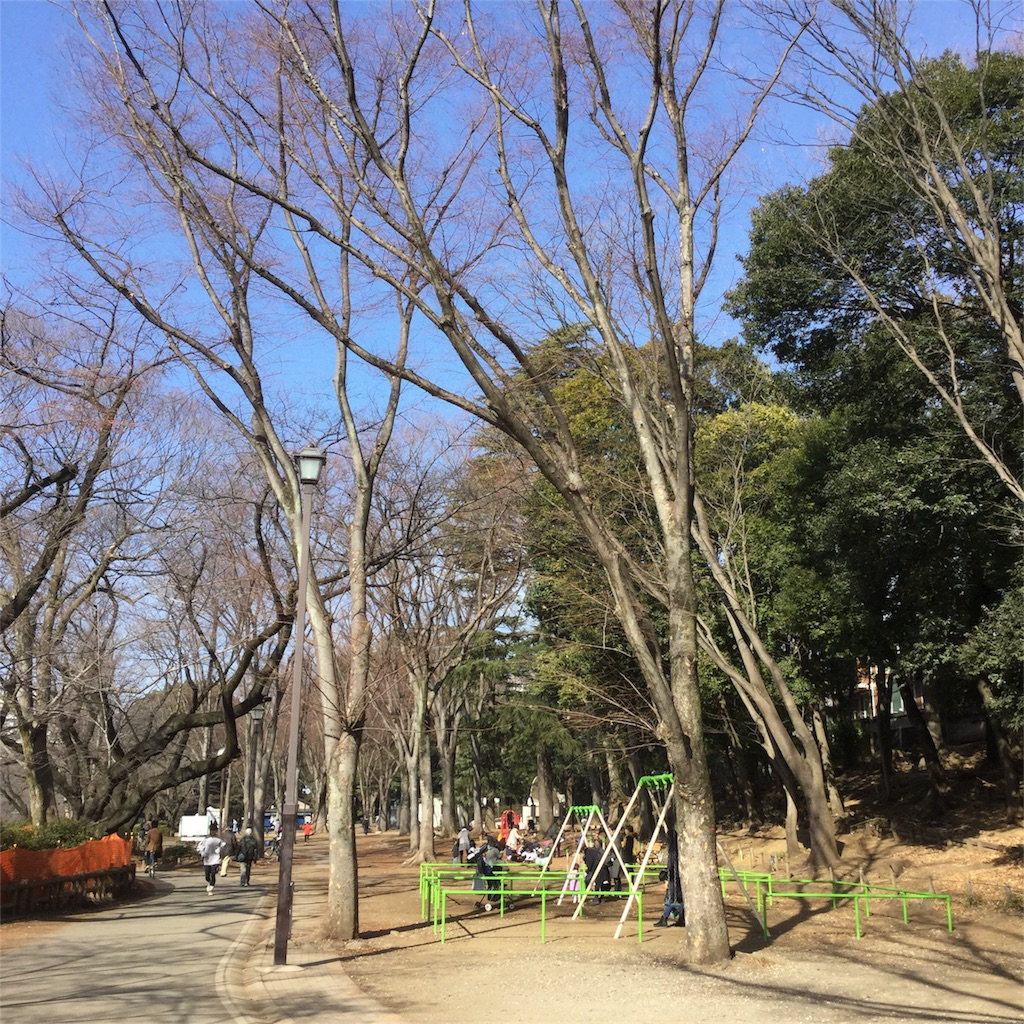 f:id:tsumetaimizuburo:20180121224650j:image