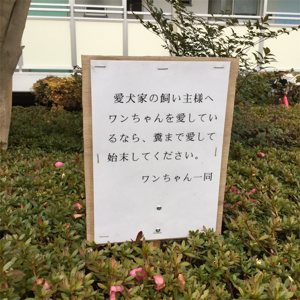 f:id:tsumetaimizuburo:20180210233951j:image