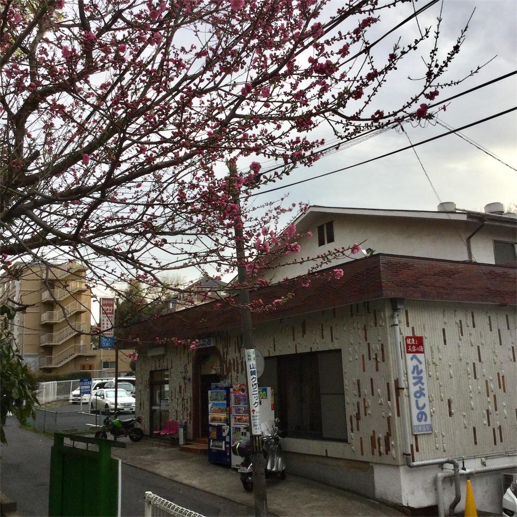 f:id:tsumetaimizuburo:20180319000249j:image