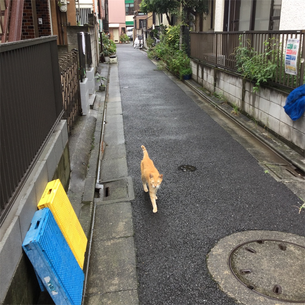 f:id:tsumetaimizuburo:20180915142757j:image