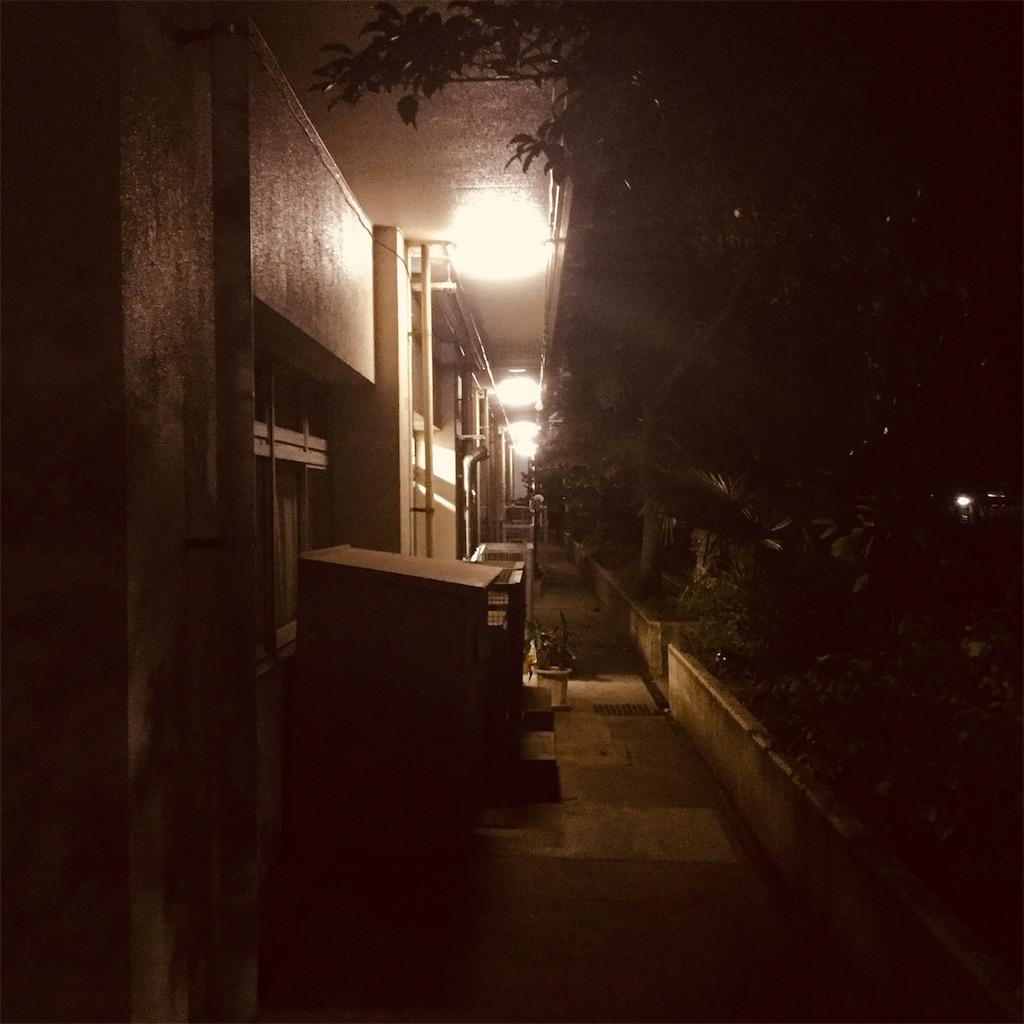 f:id:tsumetaimizuburo:20181127224943j:image