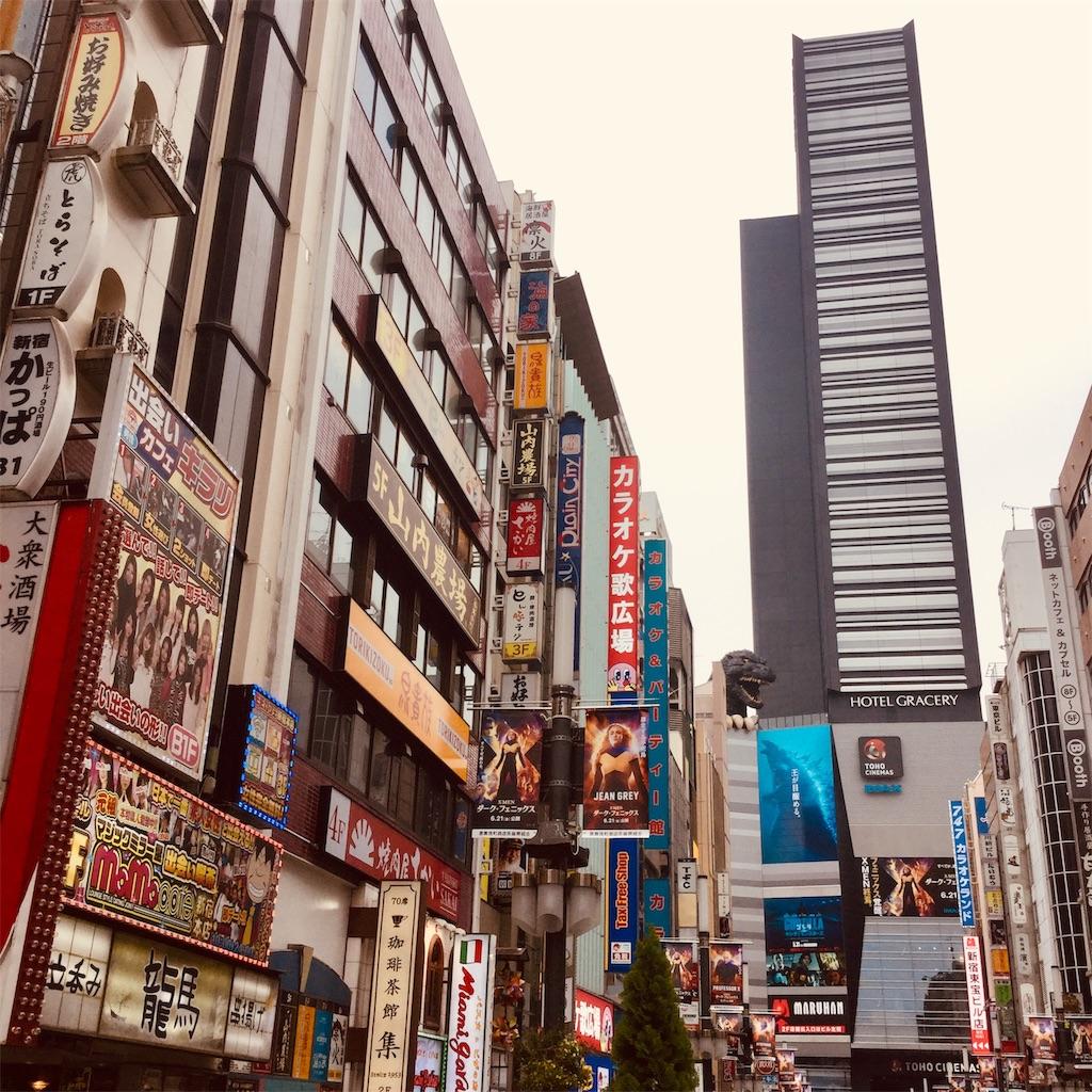 f:id:tsumetaimizuburo:20190618224834j:image