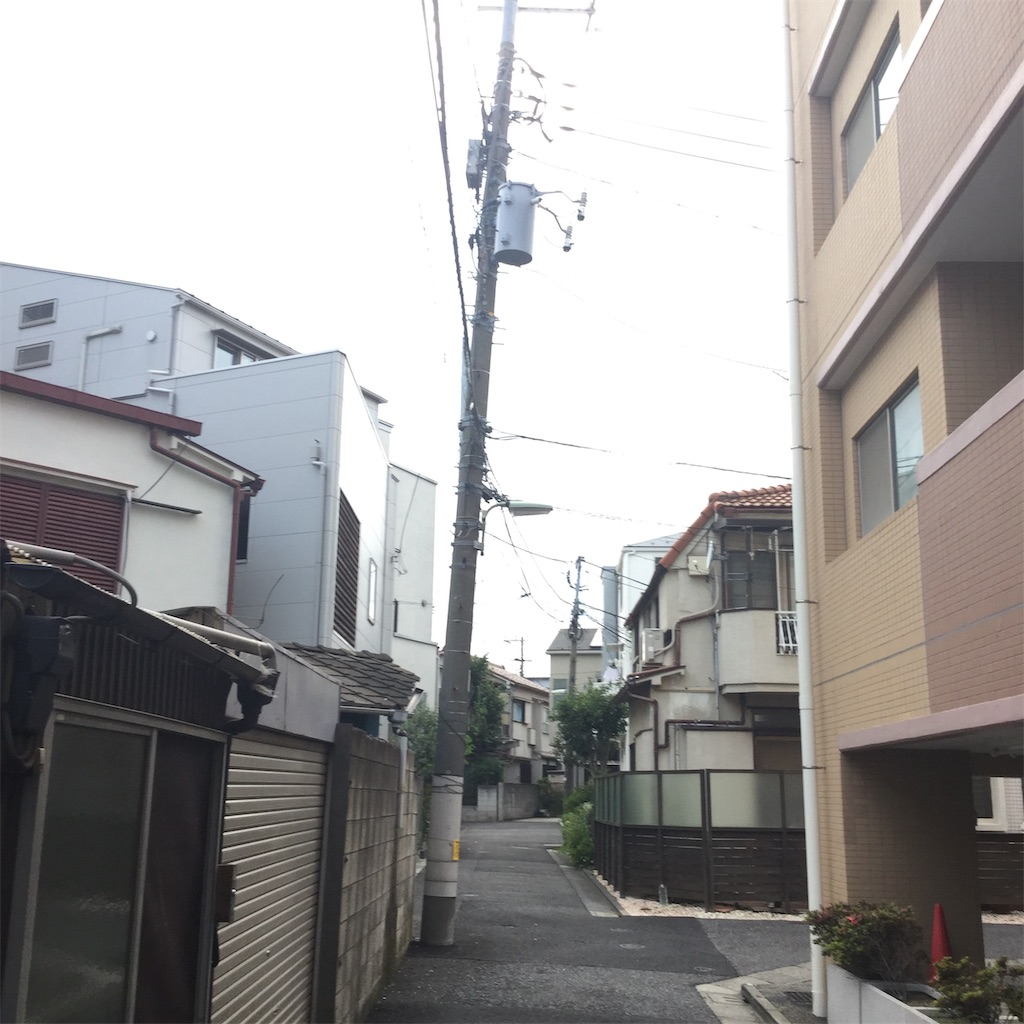 f:id:tsumetaimizuburo:20190621234556j:image