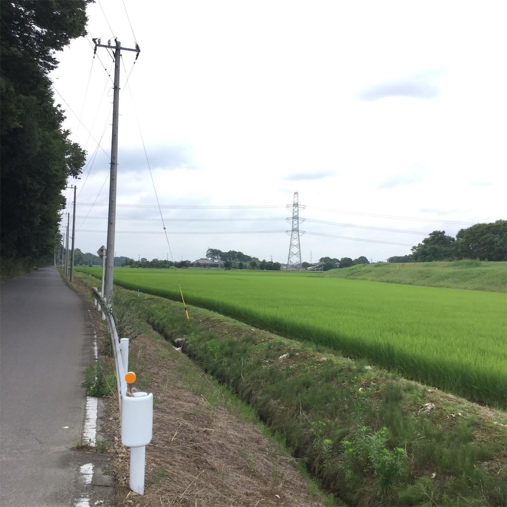 f:id:tsumetaimizuburo:20190712000700j:image