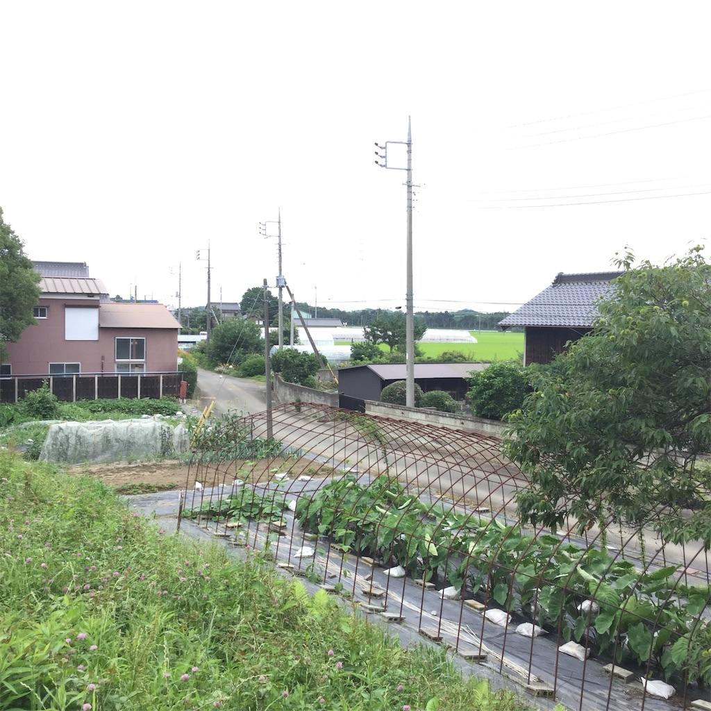 f:id:tsumetaimizuburo:20190712001017j:image