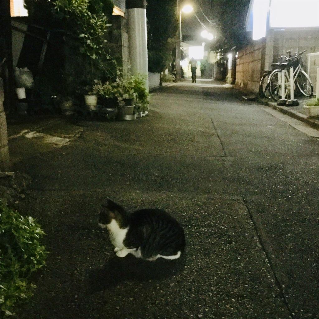 f:id:tsumetaimizuburo:20190906192921j:image