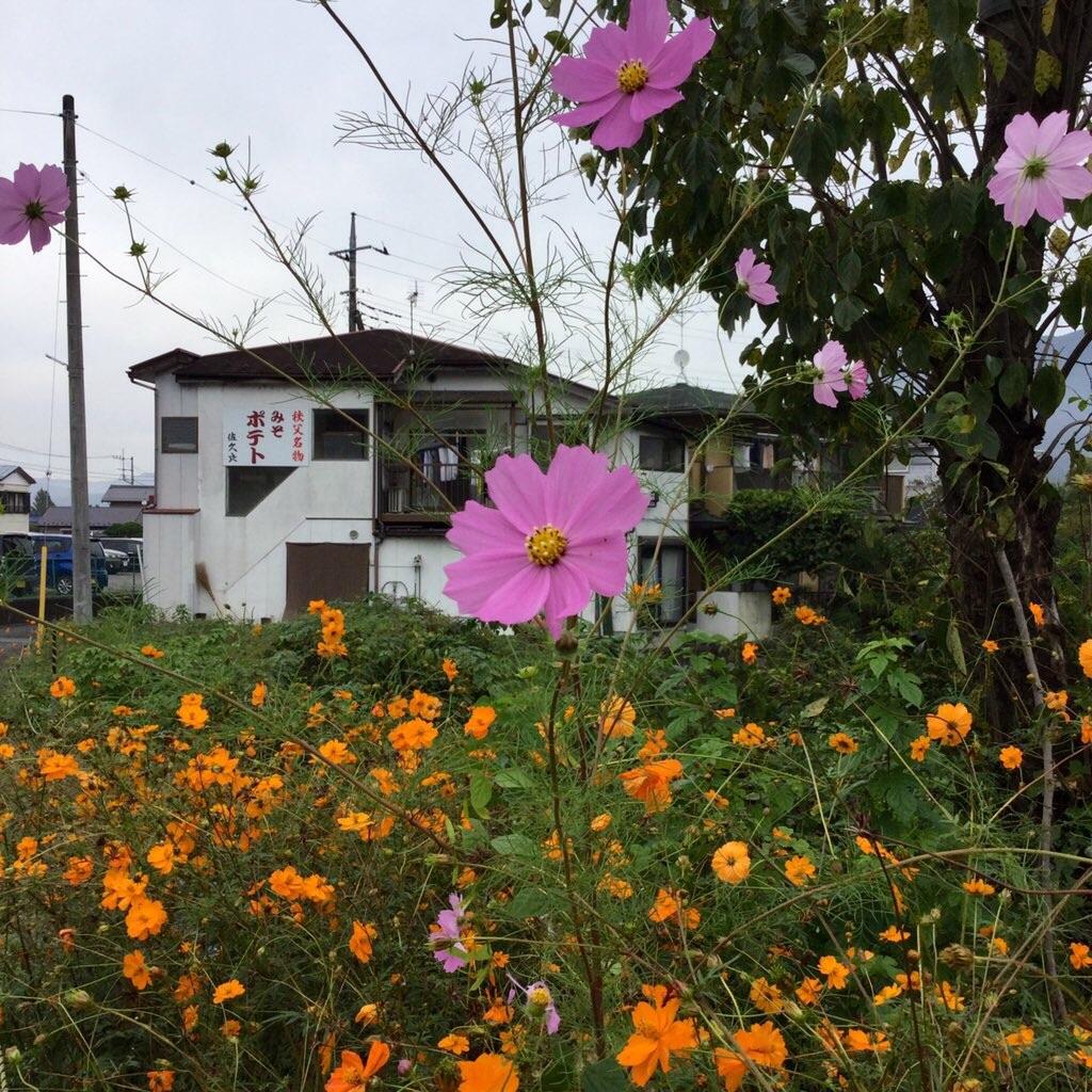 f:id:tsumetaimizuburo:20201019221938j:image
