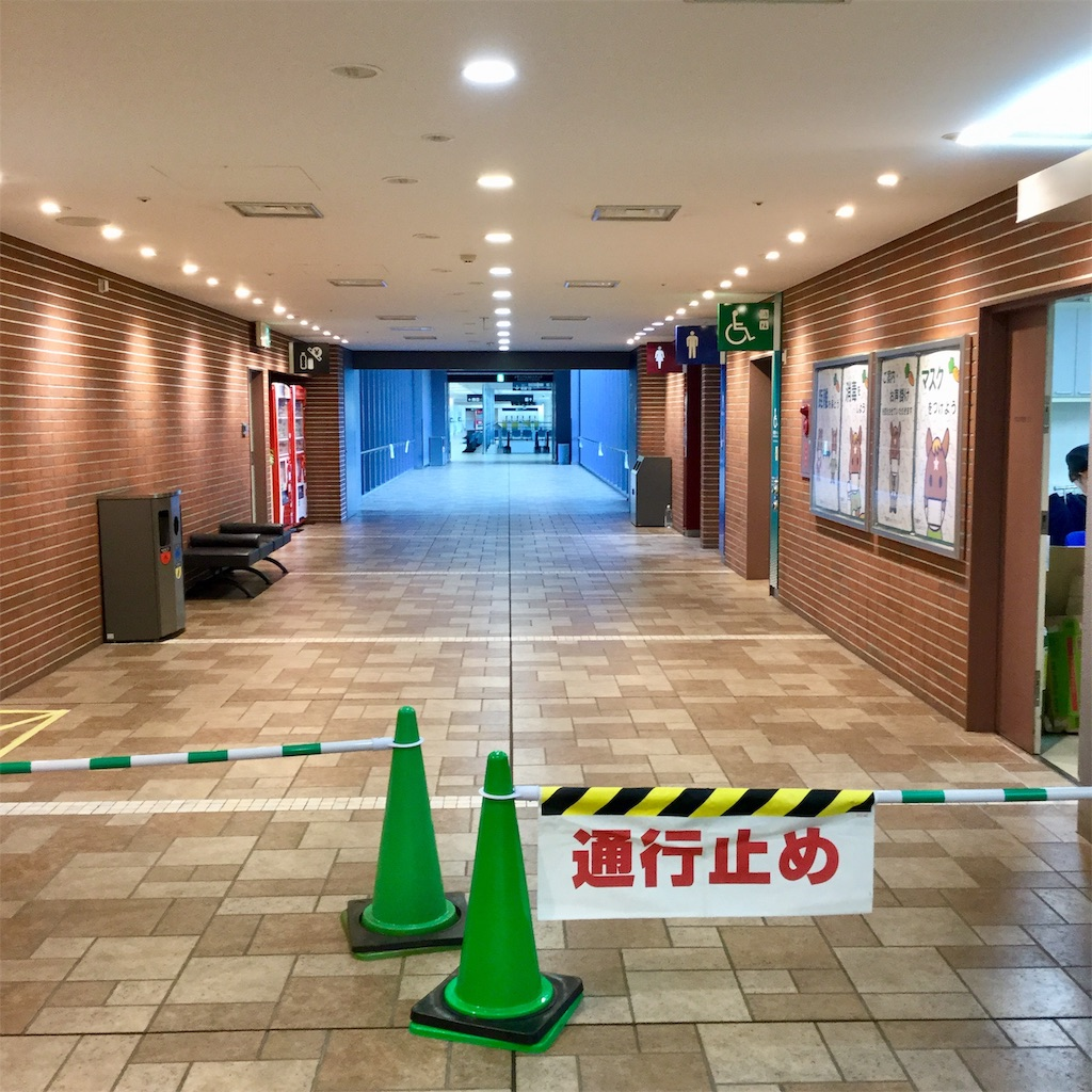 f:id:tsumetaimizuburo:20201108234603j:image