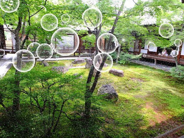 f:id:tsumikasane3:20200228161107j:plain