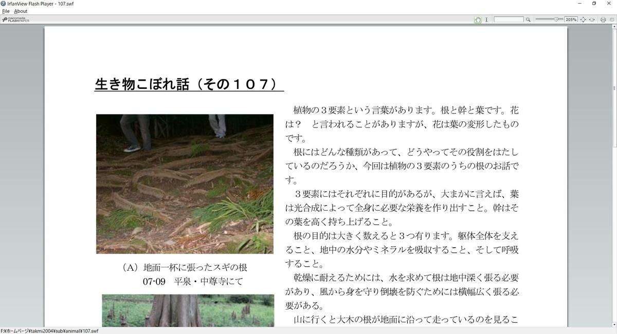f:id:tsumikasane3:20201201194329j:plain