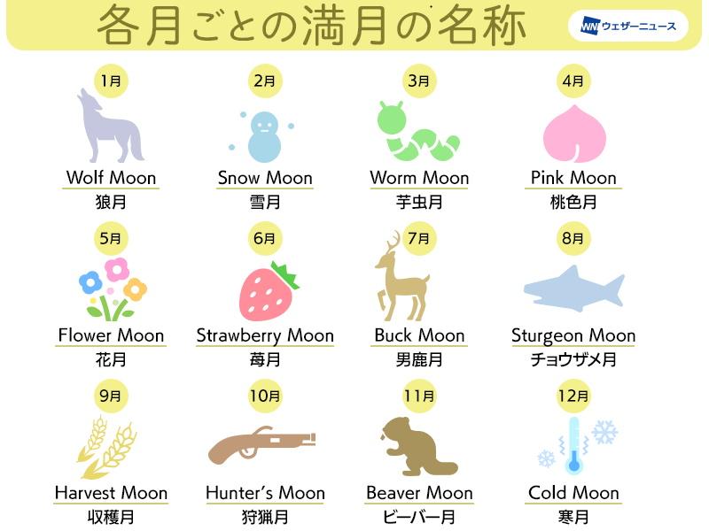 f:id:tsumikasane3:20210427205139j:plain