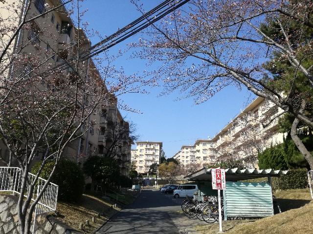 f:id:tsumugidayo:20170406212756j:image