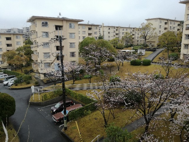 f:id:tsumugidayo:20170410184200j:image