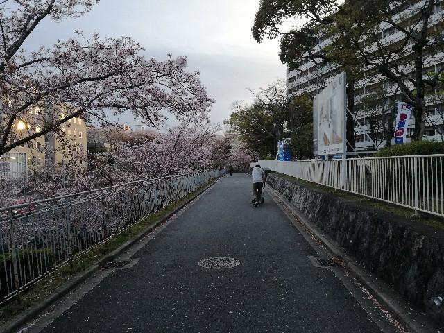 f:id:tsumugidayo:20170418214223j:image