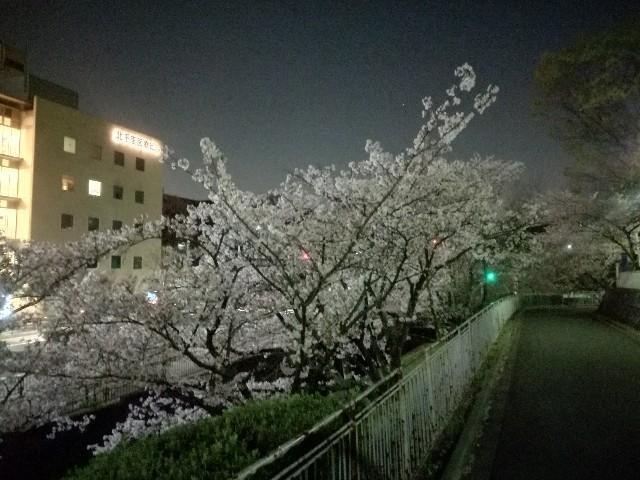 f:id:tsumugidayo:20170418214827j:image