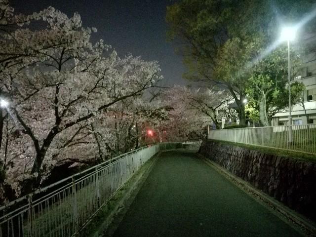 f:id:tsumugidayo:20170418214841j:image
