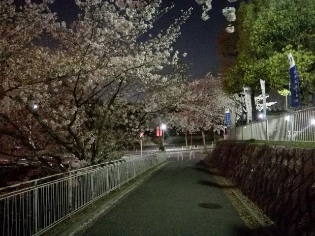 f:id:tsumugidayo:20170418214903j:image