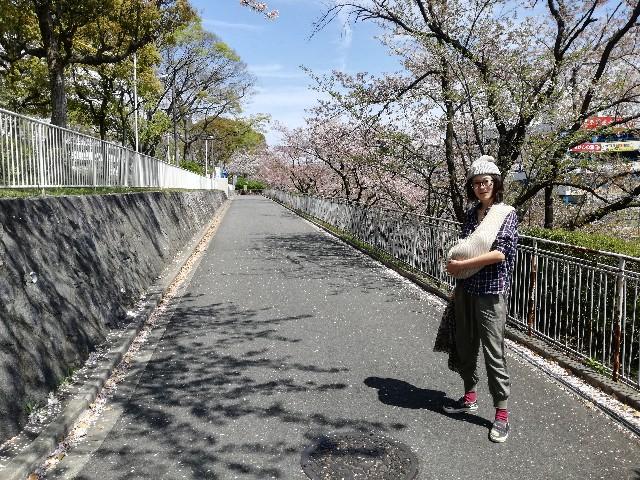 f:id:tsumugidayo:20170418215504j:image