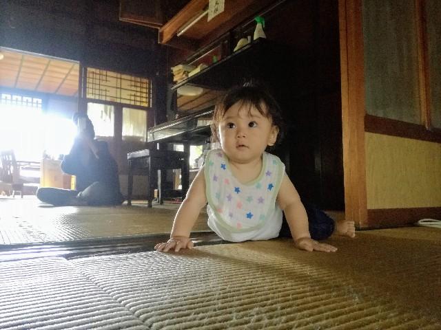 f:id:tsumugidayo:20171021130416j:image