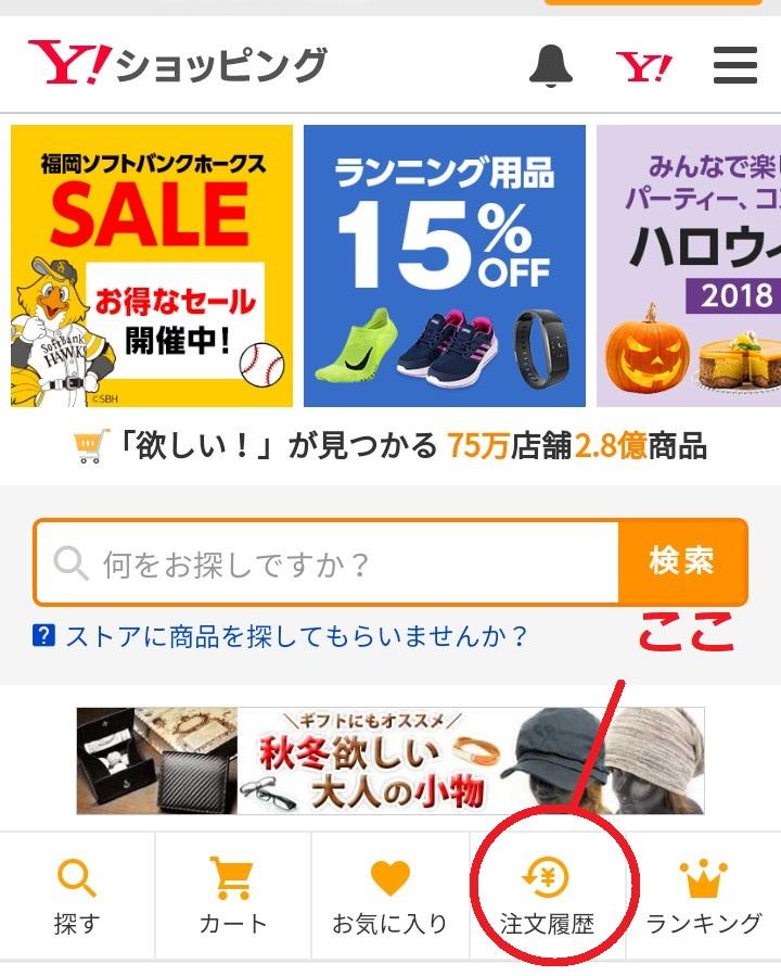 f:id:tsumuradesu:20181029145927j:plain
