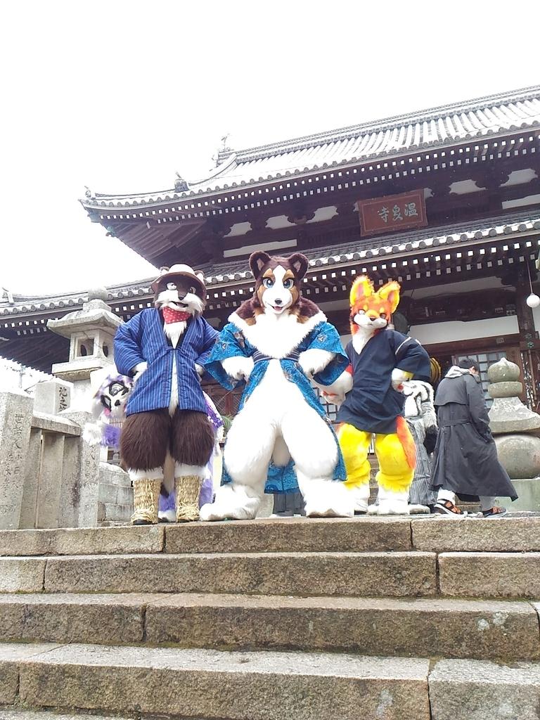 f:id:tsumuradesu:20190101152322j:plain