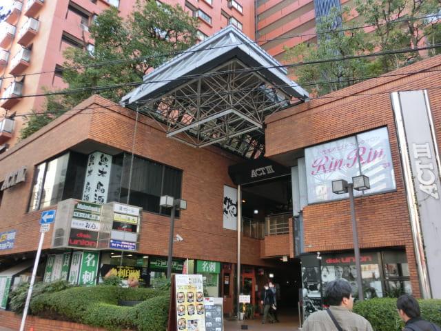 f:id:tsumuradesu:20190121210144j:plain