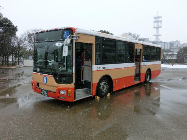 f:id:tsumuradesu:20190211234713j:plain