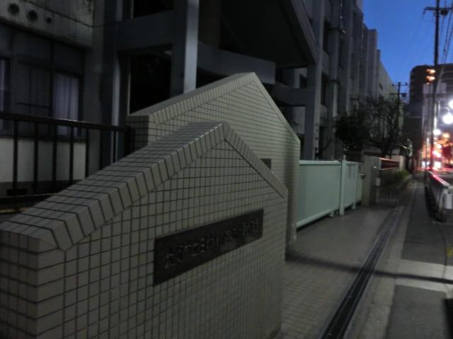 f:id:tsumuradesu:20190227041042j:plain