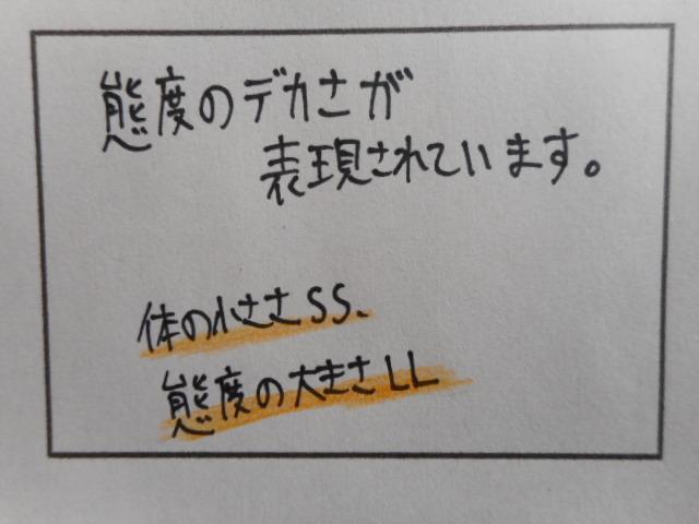 f:id:tsumuradesu:20190327185247j:plain