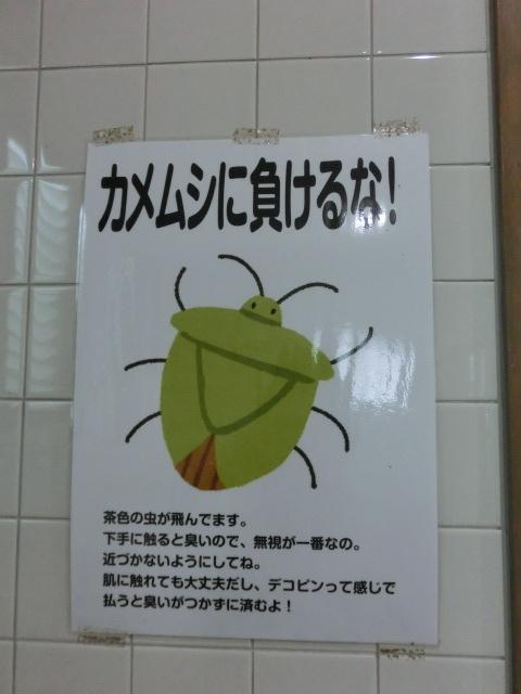 f:id:tsumuradesu:20190924215303j:plain
