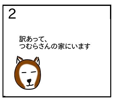 f:id:tsumuradesu:20200116205111j:plain