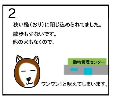 f:id:tsumuradesu:20200119065819j:plain