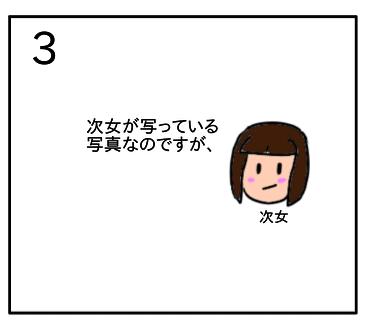 f:id:tsumuradesu:20200126151148j:plain