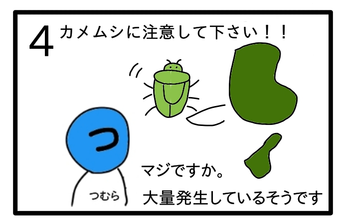 f:id:tsumuradesu:20200602201512j:plain