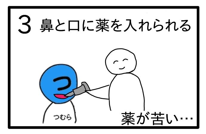 f:id:tsumuradesu:20200703220538j:plain
