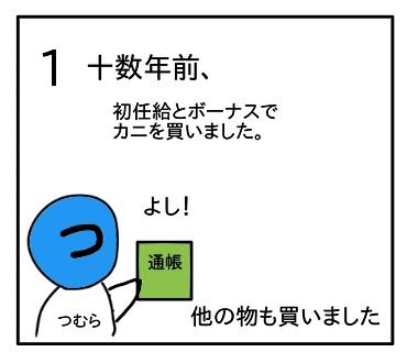 f:id:tsumuradesu:20200718230915j:plain
