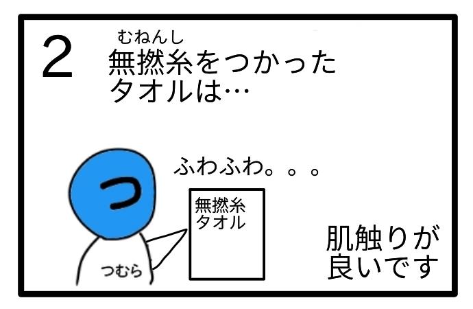 f:id:tsumuradesu:20201214202003j:plain