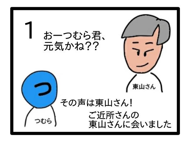 f:id:tsumuradesu:20210223092626j:plain