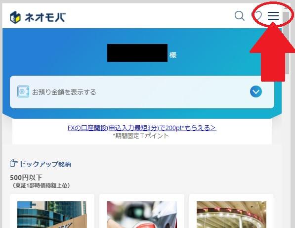 f:id:tsumuradesu:20210223191056j:plain