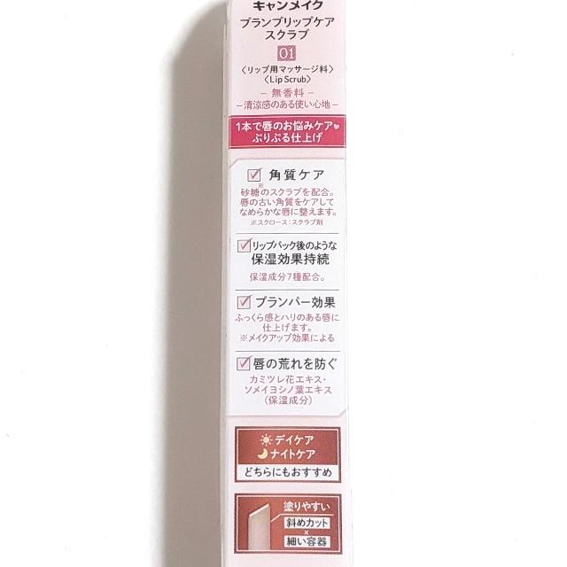 f:id:tsumuri30:20210204175417j:plain