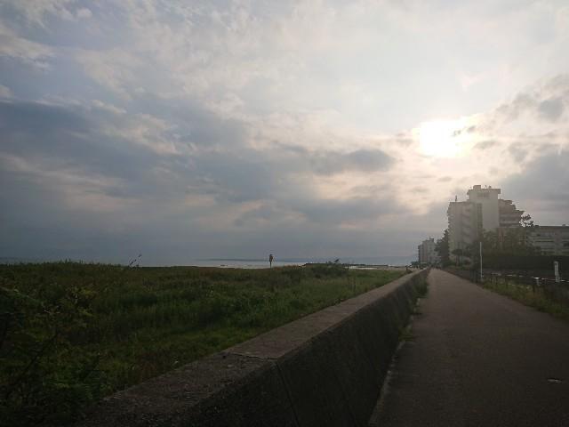 f:id:tsumutsumu2:20190916221407j:image