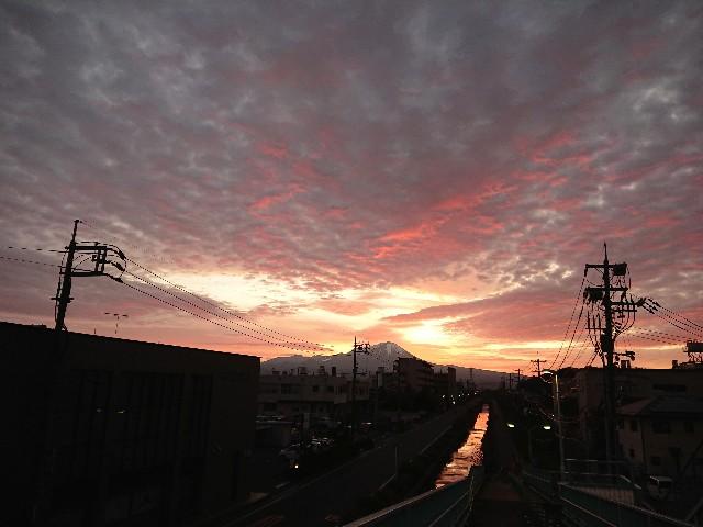 f:id:tsumutsumu2:20191201130216j:image