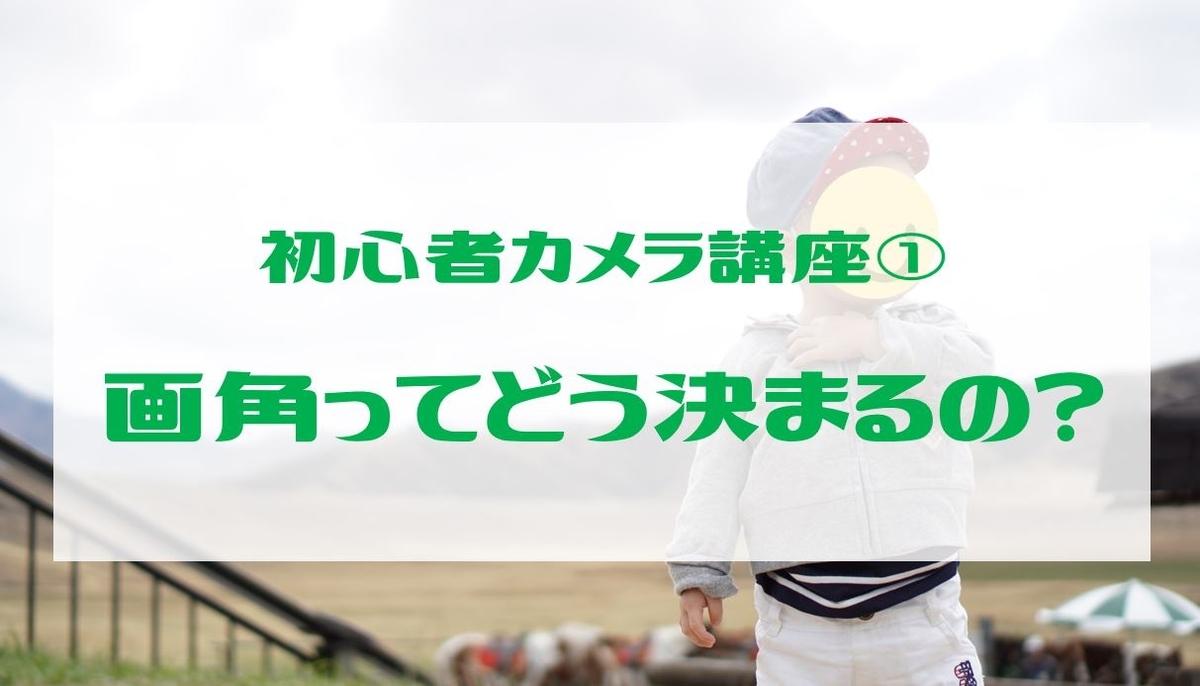 f:id:tsumuzou:20190622152157j:plain