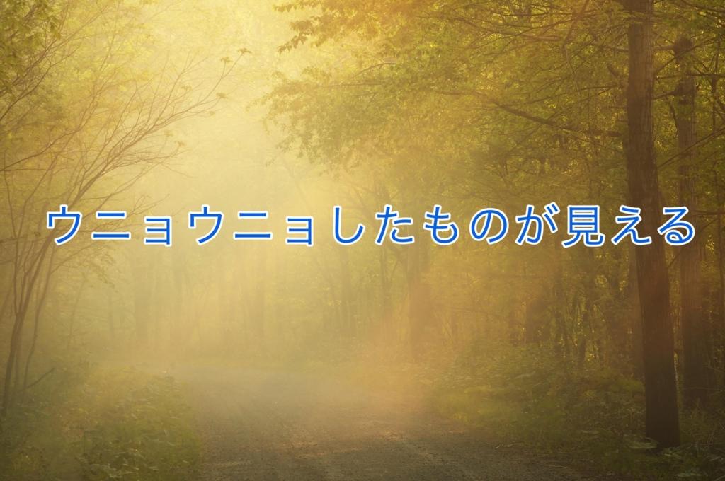 f:id:tsunakanSP:20170326154750j:plain