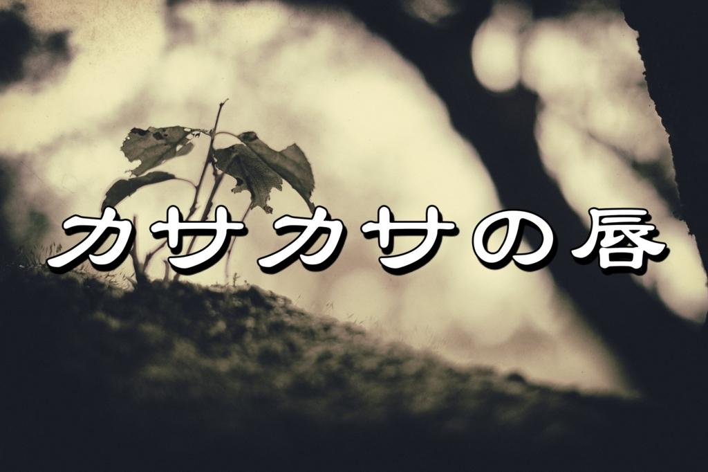 f:id:tsunakanSP:20170612214210j:plain