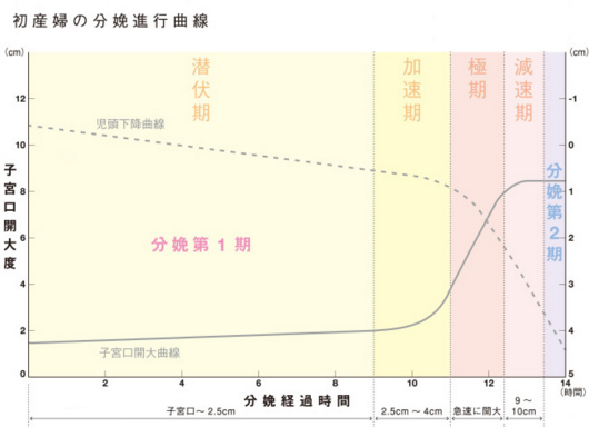 「Friedman曲線」の画像検索結果
