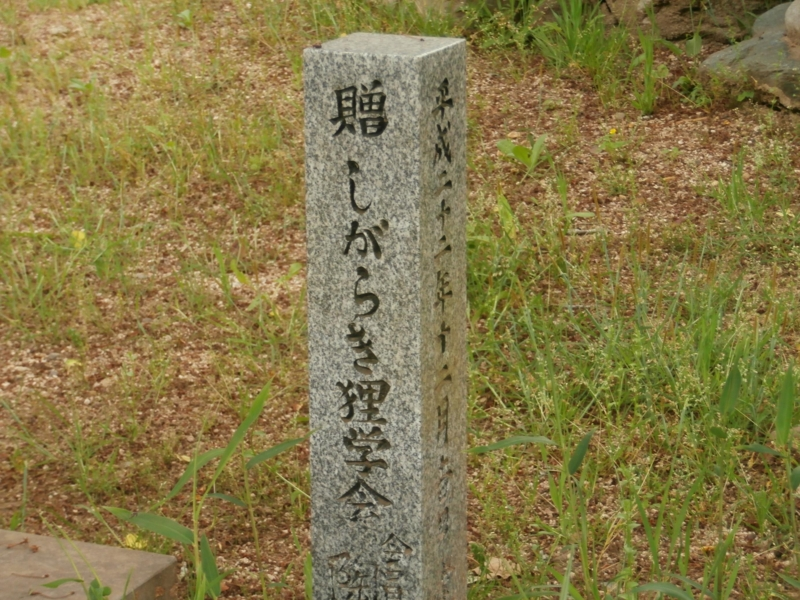 f:id:tsunezawashi:20161202233100j:plain