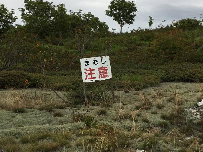 f:id:tsunezawashi:20170919225558j:plain