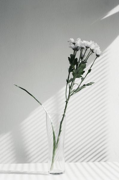 f:id:tsunowa:20180306004810j:plain