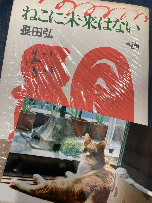 f:id:tsurezuresha-diary:20210626010606j:image